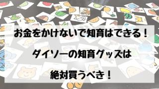 ダイソー知育グッズ紹介