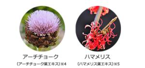クレンジングの植物の力